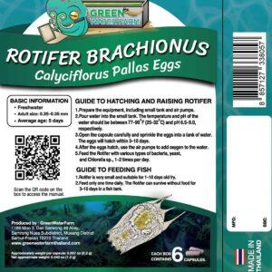 Rotifer product back
