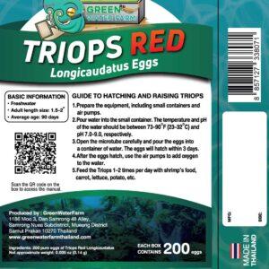 Triops Red Longicaudatus Eggs hatch