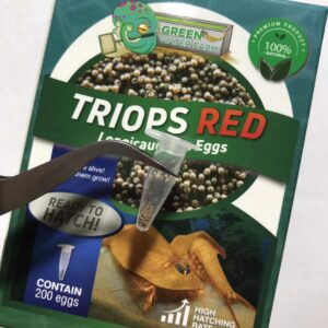 Triops Red